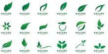 Set Of Leaf Logo Design