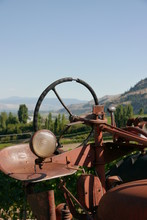 A Vintage Tractor In A Vineyar...