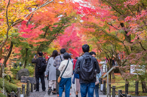 Carta da parati Happy tourists enjoying with beautiful nature in Autumn foliage season, group traveler visit in Kyoto city, Japan and looking colorful leaves in the garden