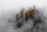 Trees On Mountain Against Sky - 345512516