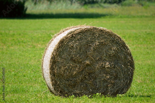 Fotografie, Obraz Close-up Of Hay Bales On Field