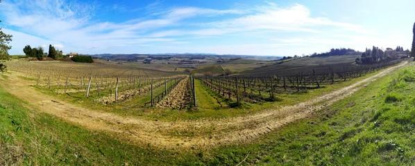 Fototapeta na wymiar Panoramic Shot Of Farm Against Sky