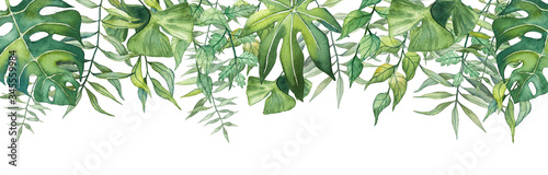 Fotografija Long banner with watercolor hand drawn tropical leaves