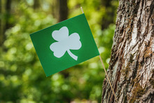 Flag With The Image Of Clover ...