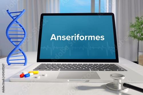 Anseriformes – Medicine/health Canvas Print