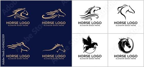 Fotomural Horse logo concept design template