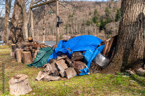 A pile of partially covered cut wood along the Allegheny River in Warren County, Wallpaper Mural