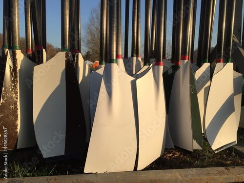 Obraz na płótnie Large Group Of Oars Outside