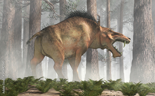 Fotografering The Entelodon, or hell pig, is an extinct prehistoric pig or boar-like mammal that lived during the Eocene and Miocene, depicted in a forest