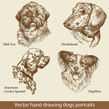 Set Of Hand Drawing Dogs