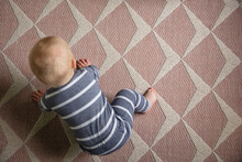 Overhead View Of A 7 Month Old...