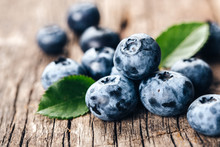 Freshly Picked Blueberries On ...