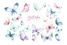 Watercolor Colorful Butterflies, Isolated Butterfly On White Background. Blue, Yellow, Pink And Red Butterfly Spring Illustration.