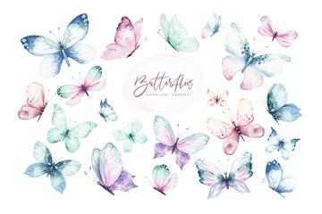 Akvareli šareni leptiri, izolirani leptir na bijeloj pozadini. ilustracija proljeća leptira plave, žute, ružičaste i crvene boje.