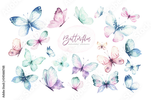 Fototapeta Watercolor colorful butterflies, isolated butterfly on white background. blue, yellow, pink and red butterfly spring illustration. obraz