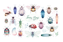 Set Of Watercolor Bright Beetles, Bugs Fly And Bees. Isolated Colorful Cartoon Buttle And Bug. Insect Set Decoration