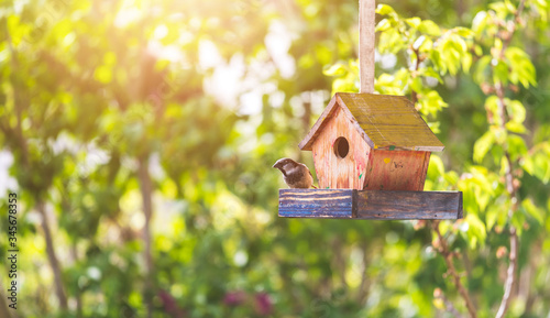 Photographie Colorful birdhouse in idyllic garden: Wooden birdhouse and copy space