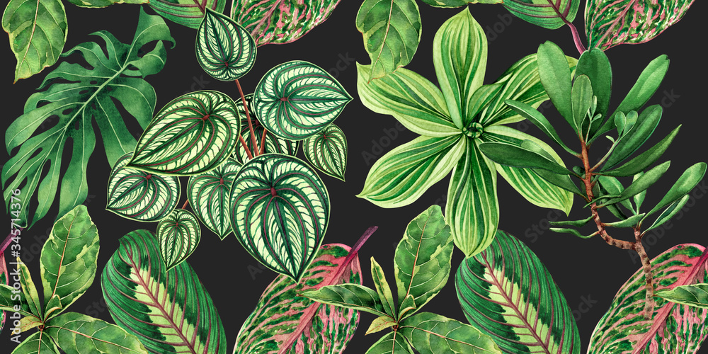 Fototapeta Watercolor painting colorful tropical palm leaf,green leaves seamless pattern background.Watercolor hand drawn illustration tropical exotic leaf prints for wallpaper,textile Hawaii aloha jungle style.