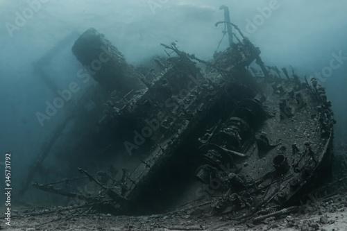 Fotografia Ghiannis D / Giannis D / Red Sea wreck