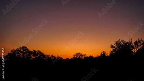 Silhouette of the trees with the colorful beautiful sky in the background