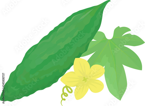 Photo Illustration of bitter melon decorated with flowers and leaves.