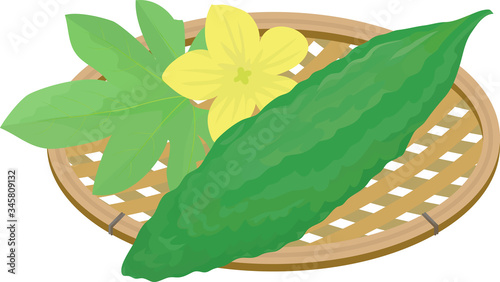 Illustration of bitter melon in a basket decorated with flowers and leaves Canvas Print