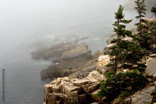 Photo Arcadia National Park
