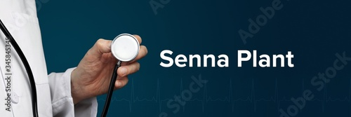 Carta da parati Senna Plant