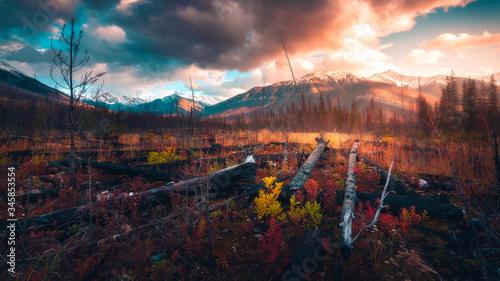 Obraz sunrise in the mountains 4K - fototapety do salonu