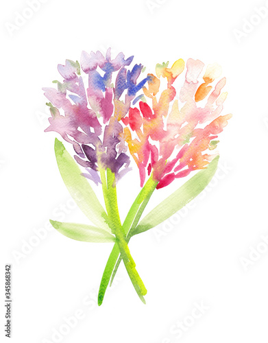 A pair of hyacinth flowers painted in pink and blue with watercolors Tapéta, Fotótapéta