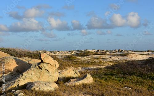 Windswept and Sunny Rugged Landscape of Aruba Slika na platnu