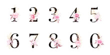 Watercolor Floral Number Set. ...
