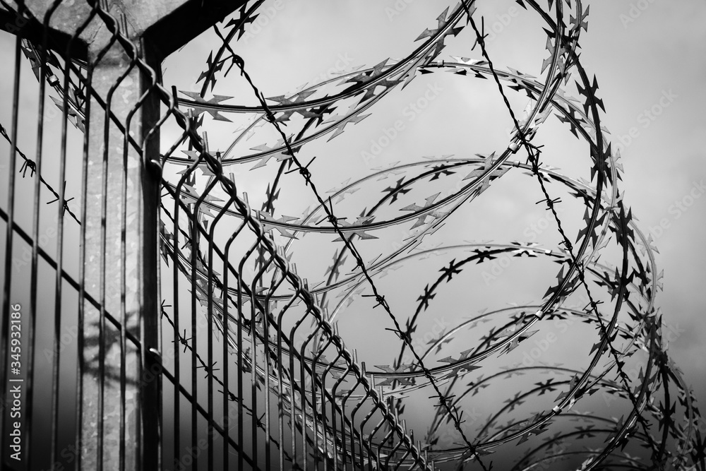 Fototapeta barbed wire fence