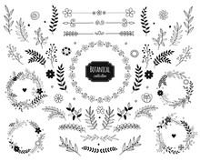 Hand Drawn Vector Floral Eleme...