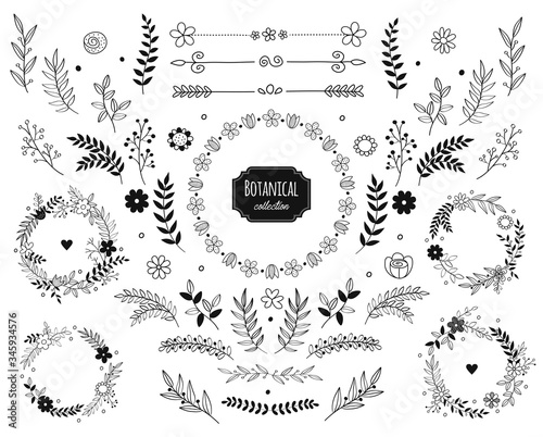 Fototapeta Hand drawn vector floral elements. Branches and leaves. Herbs and plants collection. Vintage botanical illustrations and floral wreaths. obraz