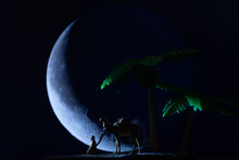 Miniature Toys - Low Key Silhouette Of Arab Man Sits Down Resting Or Praying With Crescent Moon And Palm Dates Trees In The Background.
