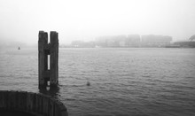 Amsterdam Harbour In The Mist ...