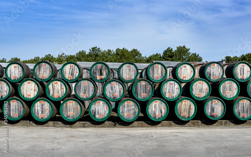 Wooden wine barrels in open air on winery yard Canvas Print