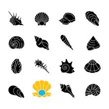 Seashells Black Glyph Icons Se...
