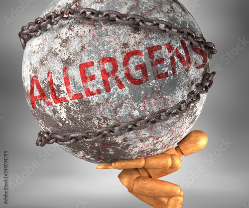 Photo Allergens and hardship in life - pictured by word Allergens as a heavy weight on