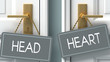 heart or head as a choice in life - pictured as words head, heart on doors to show that head and heart are different options to choose from, 3d illustration
