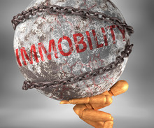 Immobility And Hardship In Lif...