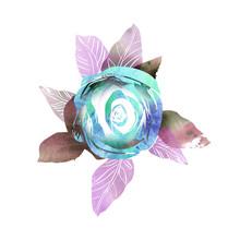 Illustration Of Rose Flower. W...