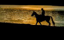 O Solitário Cavaleiro