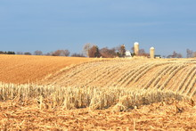 Rolling Farm Hills