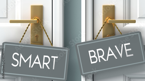 Photo brave or smart as a choice in life - pictured as words smart, brave on doors to