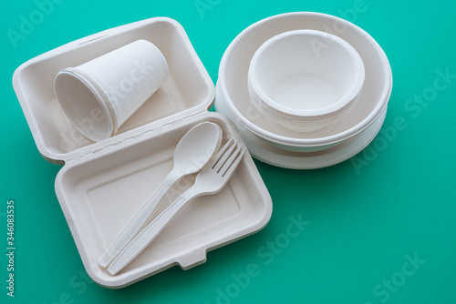 Natural eco-friendly disposable utensils (fork, spoon, dish plate, bowl, cup and fast food box container) made of fiber of bagasse and bamboo on green background copy space Canvas Print