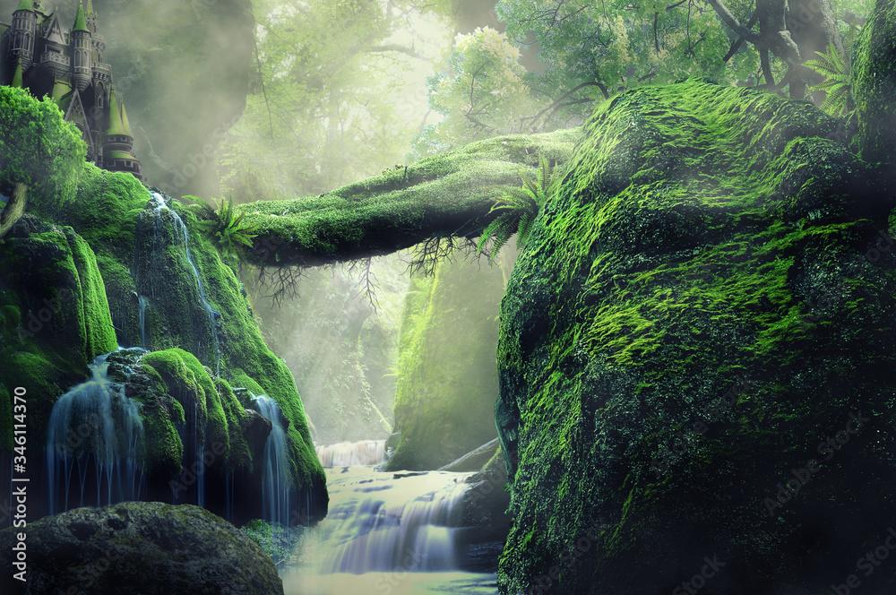 Fototapeta waterfall in the woods