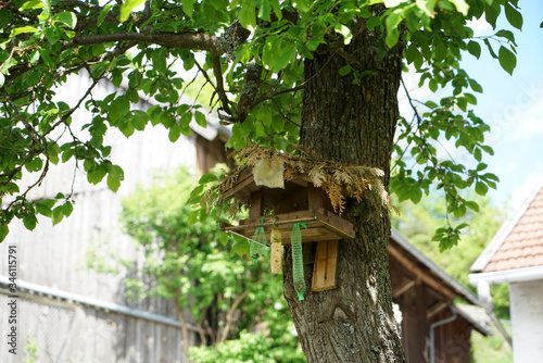 Bird house in the summer abandoned by birds and without food Canvas Print