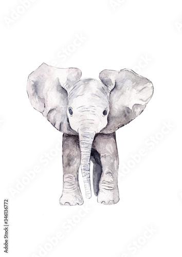 Cute Baby Elephant calf standing Canvas Print